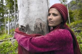 Le donne albero - Carlo Stoppa (2)