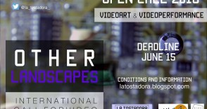 OTHER LANDESCAPES | International call video and performance
